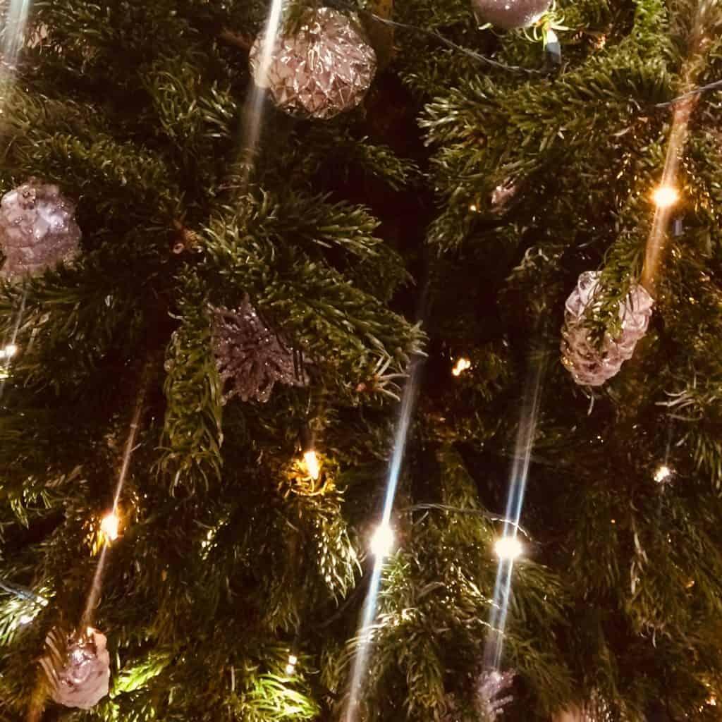 IMG 4151 1024x1024 - Romeo & Julius am 14.12.: Die große Jungschwuppen-Weihnachtsfeier