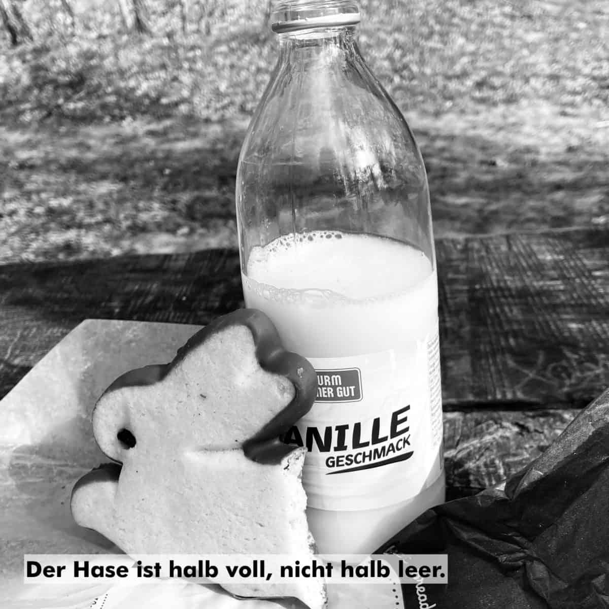 IMG 6699 - Jungschwuppen Mittwochsclub am 7.4.: Server frühlingsputzen!