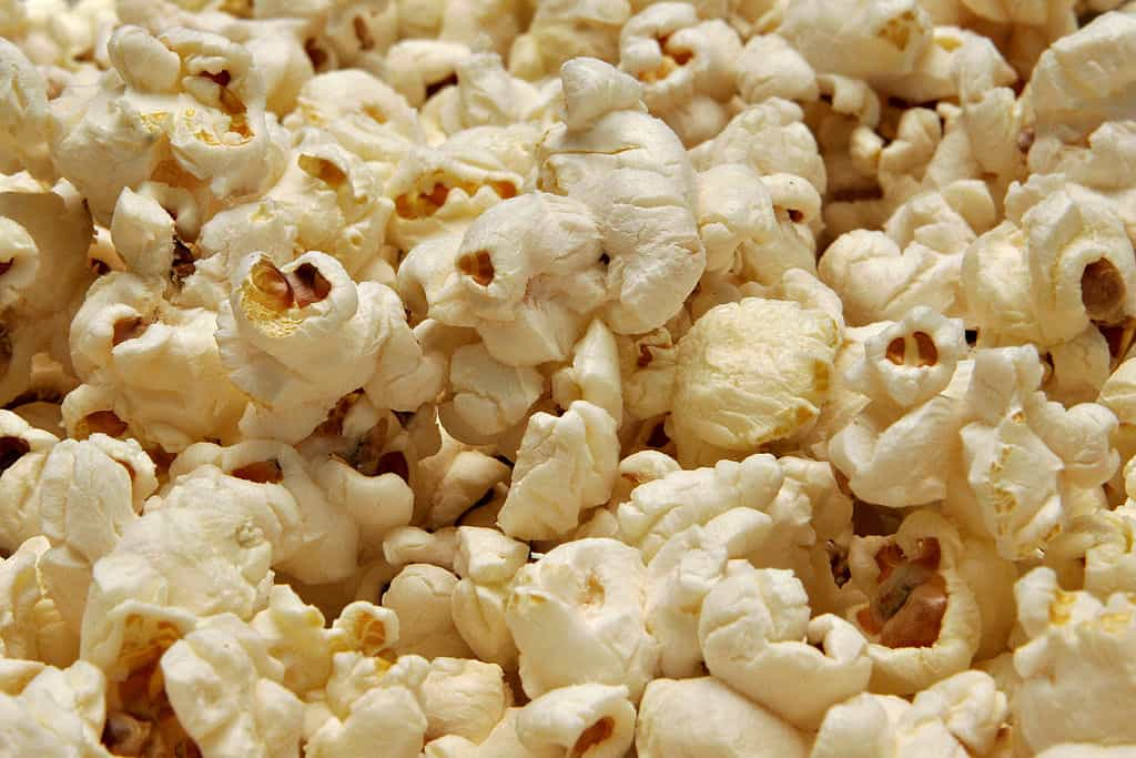 Popcorn - Romeo & Julius am 8.10.: Süß oder Salzig?