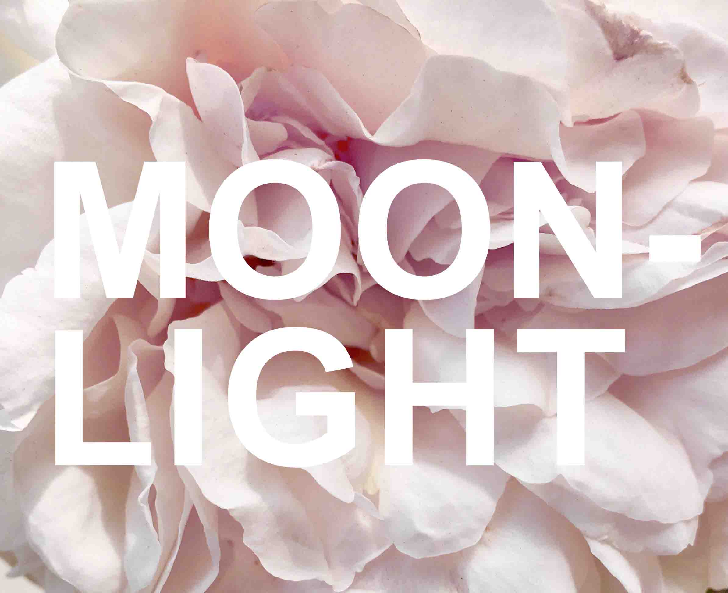 blume moonlight - Jungschwuppen Mittwochsclub am 26.9.