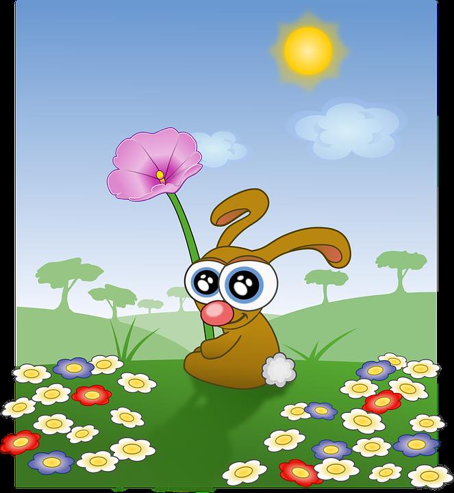 bunny-161782_960_720