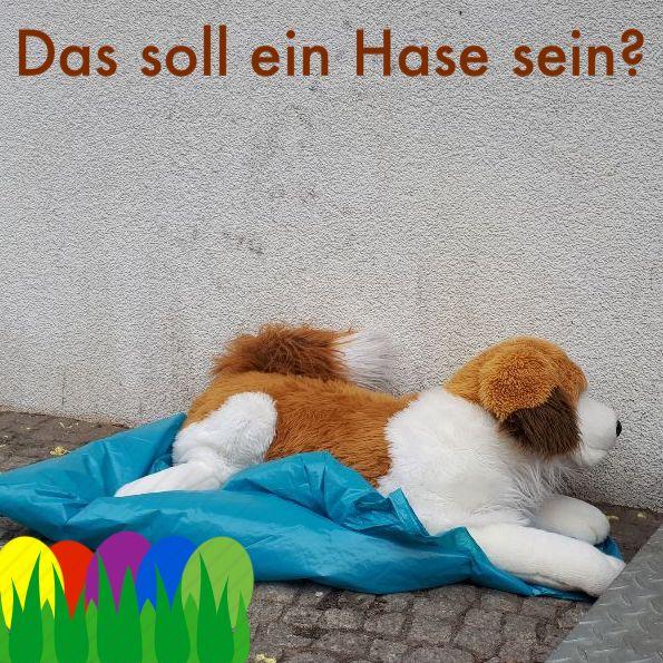 woderhasebegrabenliegt - Jungschwuppen Mittwochsclub am 31.3.2021: Haustiere